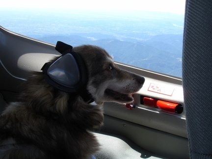 my favourite co-pilot and first officer on board